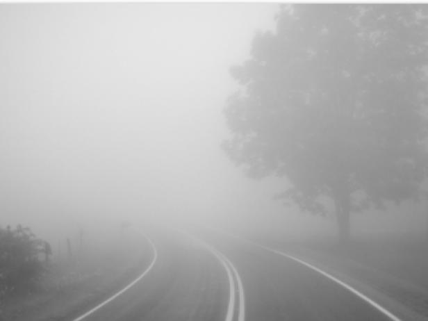Туман: погода у Гощі 17 лютого