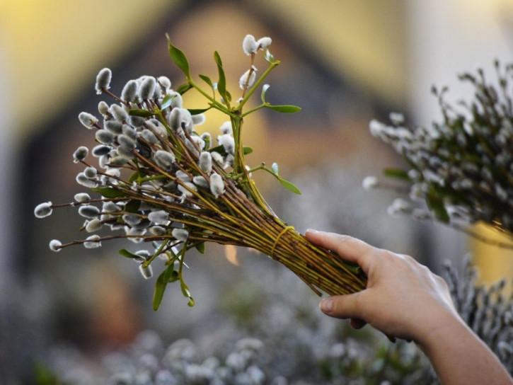 Вербна неділя: історія, традиції і прикмети свята