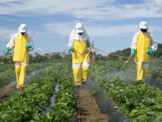 Гощанам дали рекомендації щодо заходів безпеки при роботі з пестицидами