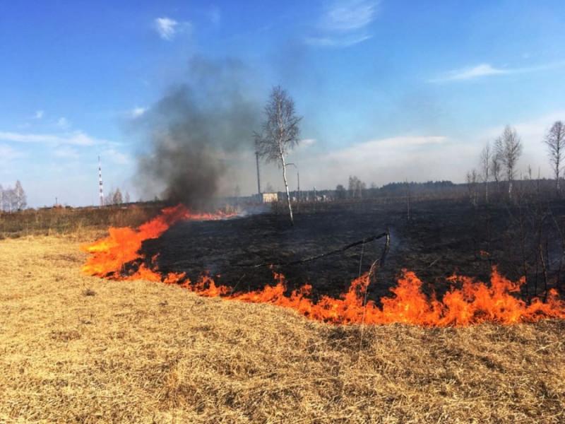 Фото ілюстративне/Загоряння сухої трави