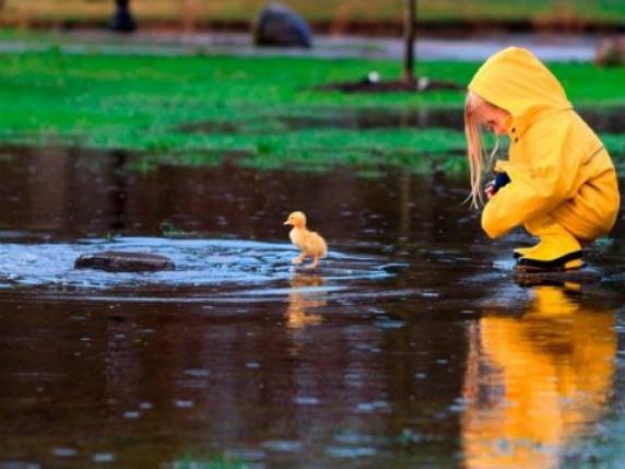 Погода у Гощі 3 жовтня