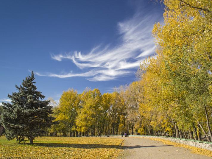 Сонячна погода очікується 16 жовтня у Гощі