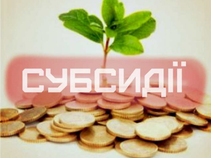 Поради мешканцям Гощанщини: 7 основних змін у призначені субсидії