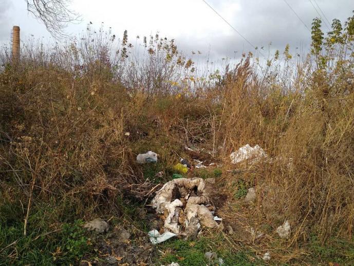 Гощанське сміття видно з космосу: чиновники коментують ситуацію з смітниками у селищі