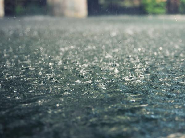 У Гощі 14 листопада очікується дощ