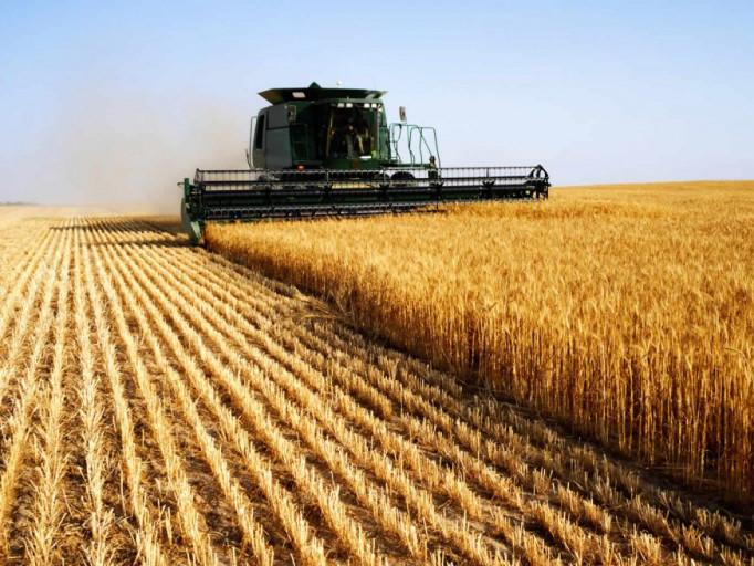 Свята, іменини та дати 18 листопада: День аграрія