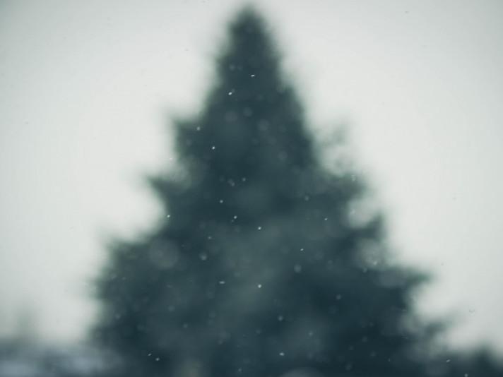 У Гощі 6 листопада очікується похмура погода