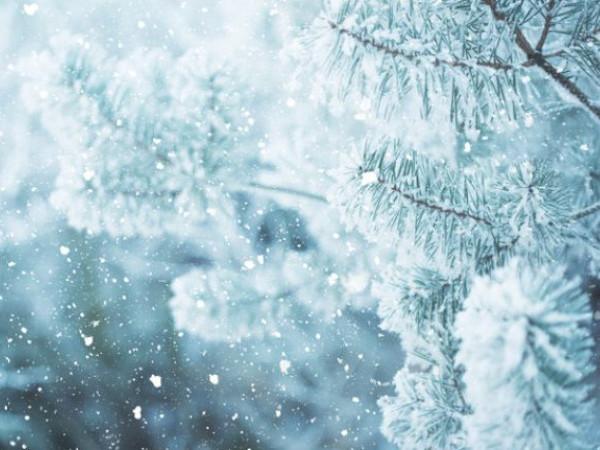 Погода у Гощі: впродовж усього дня 16 грудня йтиме сніг
