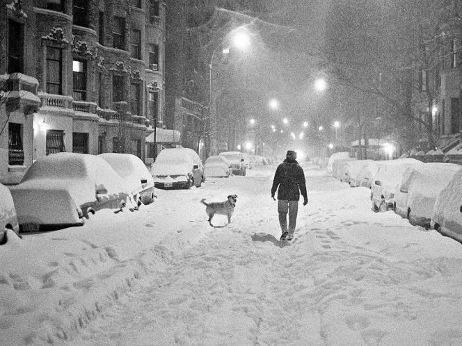 Сильний сніг очікується 17 грудня у Гощі