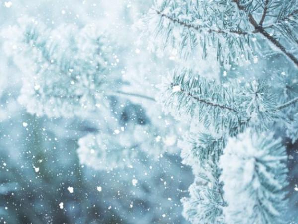 Погода у Гощі: протягом усього дня 5 січня йтиме сніг