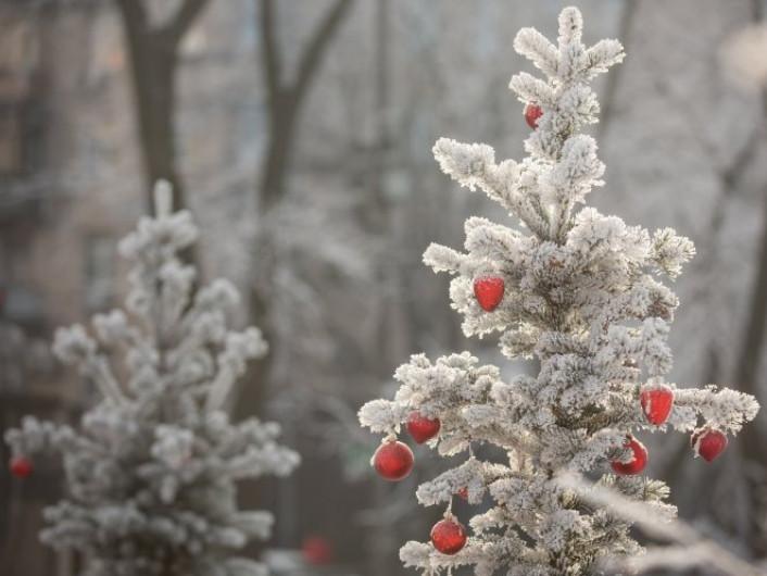 У Гощі 7 січня очікується похмура погода