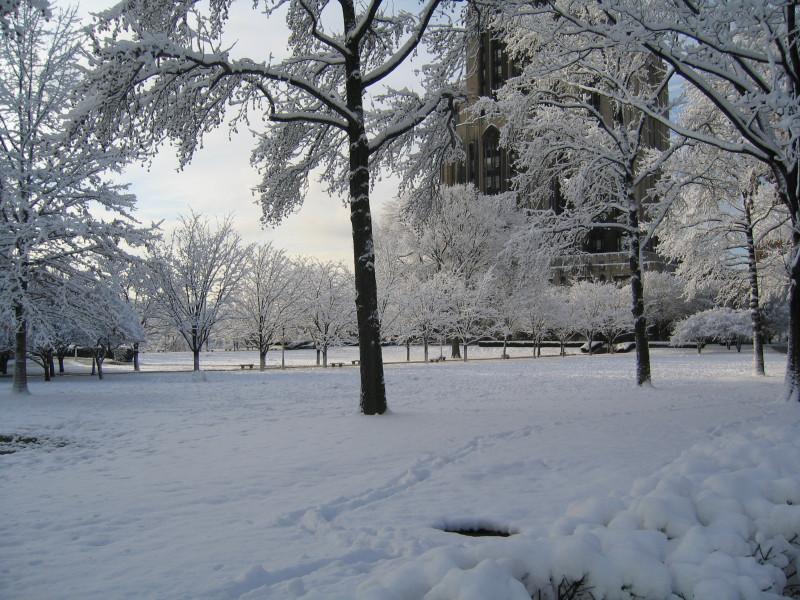 Хмарно та -13°: погода у Гощі 11 січня