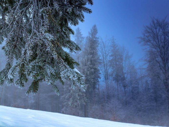 У Гощі 4 лютого очікується хмарна погода
