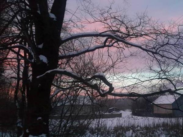 Похмура погода очікується у Гощі 5 лютого